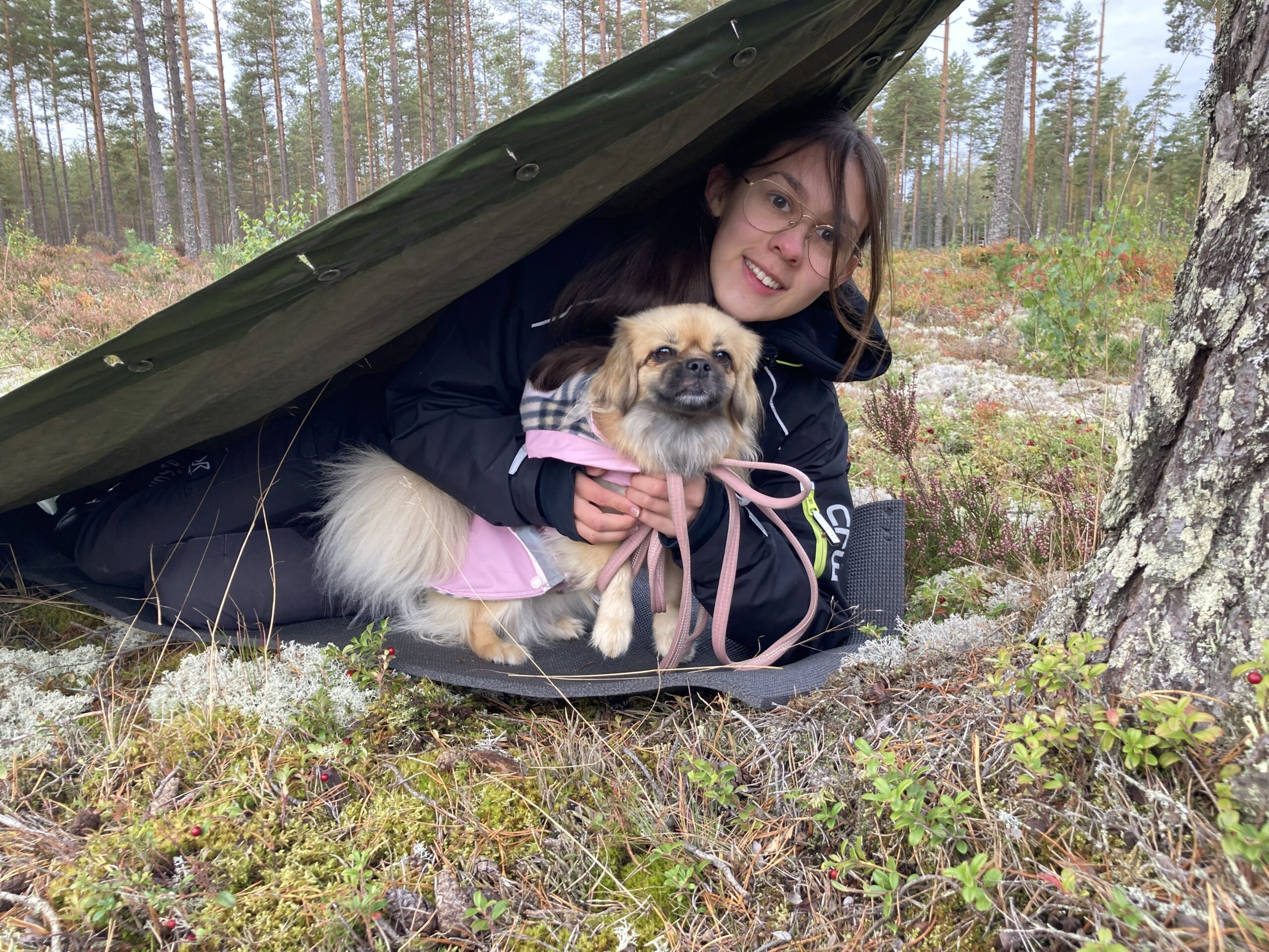 Elev och hund i vindskydd