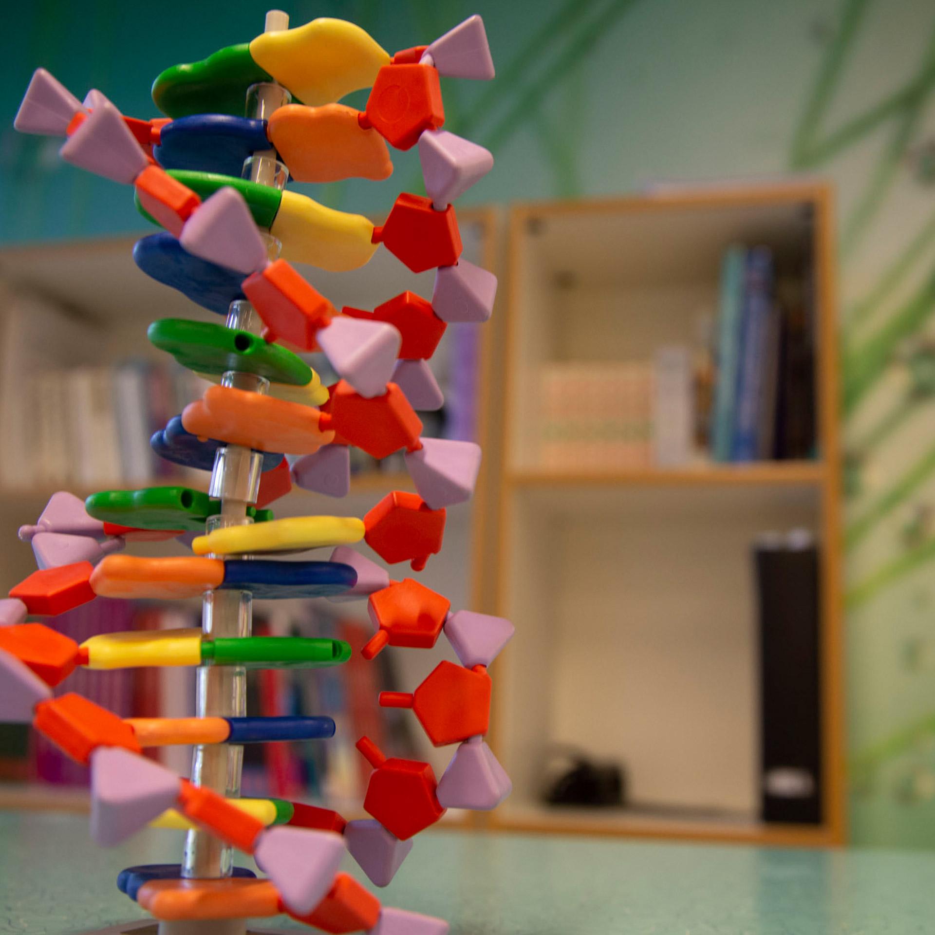 Klara Gymnasium – Naturvetenskapsprogrammet